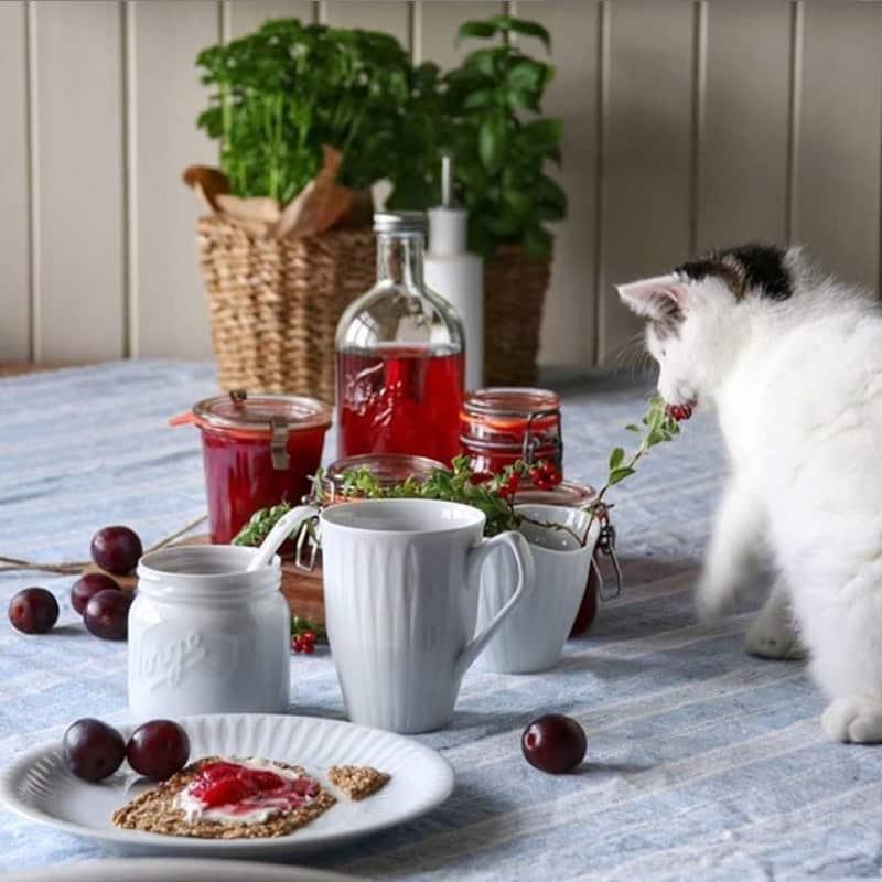 craquant-norvegien-breakfast-02