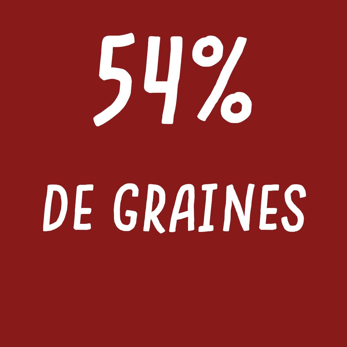 crackers ail oignon 54% de graines
